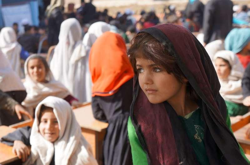 Xiqueta afganesa (2013)